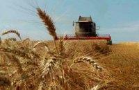 На Днепропетровщине собрали уже более 2,7 млн тонн зерна