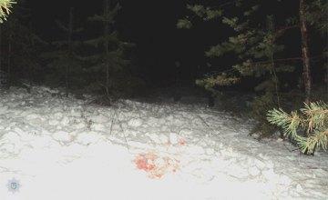 В Днепропетровской области охотник выстрелил себе в голову из ружья