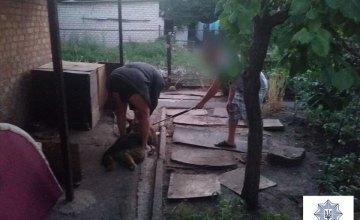 В Кривом Роге собака напала на своего хозяина и едва не бросилась на полицейских