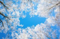 Погода в Днепре 24 января: холодно и солнечно