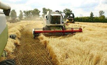 Днепропетровская область - лидер по объемам сбора урожая ранних зерновых