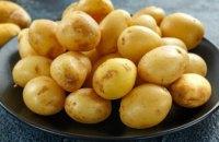 В днепровских супермаркетах резко возросла цена на картошку