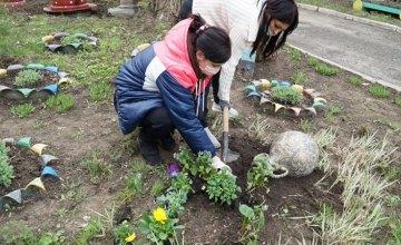 Працівники ясел-садка № 33 навели лад та прикрасили квітами територію закладу