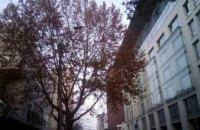 Погода в Днепре 7 декабря: прохладно и облачно