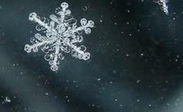 Сегодня в Днепропетровске тепло и мокрый снег