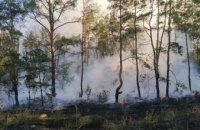 В Царичанском районе спасатели ликвидировали лесной пожар