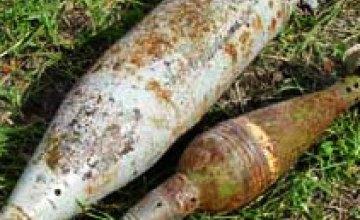 Жители Днепропетровской области нашли 13 боевых снарядов
