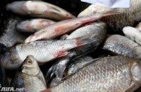 Украина побила 20-летний рекорд по вылову рыбы