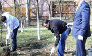 В чистый четверг Днепропетровский «Фронт Змін» высаживал деревья и убирал город
