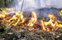 Более 60 раз в этом году горел лес на Днепропетровщине