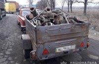 На Днепропетровщине 56-летний мужчина незаконного спилил деревья