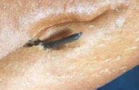 В Днепре местная жительница обнаружила гвоздь в батоне хлеба (ФОТО)