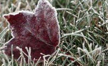 Сегодня в Днепропетровске холодно и сухо