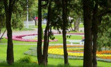 В Желтых Водах появится новый сквер, названный в честь 80-летия Днепропетровской области