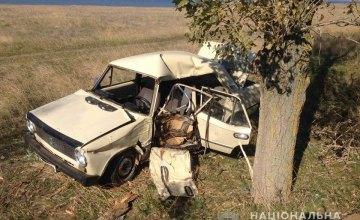 Смертельное ДТП в Одесской области: водитель не справился с управлением и врезался в дерево (ФОТО)