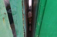 В Кривом Роге спасатели помогли собаке, застрявшей между гаражами