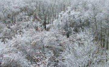 Завтра в Украине ожидаются снегопады