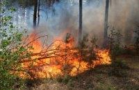 Из-за наивысшего класса пожарной опасности жителям Днепропетровщины запретили посещать леса