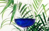 В Испании создали вино ярко-синего цвета (ФОТО)