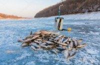 За 2018 год в Днепропетровской области выявили почти 4 тыс. нарушений вылова рыбы
