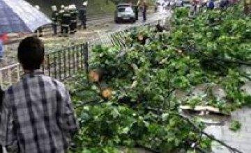 На западной Украине прошел ураган