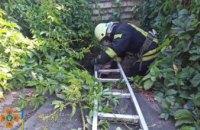 В Кривом Роге 50-летняя женщина упала в выгребную яму (ВИДЕО)