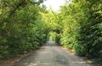 В Днепропетровской области обнаружили «тоннель любви» с огромными ямами (ФОТО)