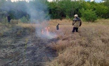 В Желтых Водах пожарные ликвидировали возгорание сухой травы