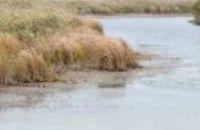 На Днепропетровщине впервые расчистят речку Самарчук