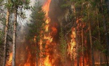ГАИ устанавливает средства препятствования движению на въездах в леса Днепропетровской области