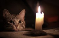 Завтра в Новокодацком  районе Днепра не будет света