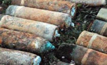 Житель Днепропетровской области обнаружил у себя во дворе 29 снарядов