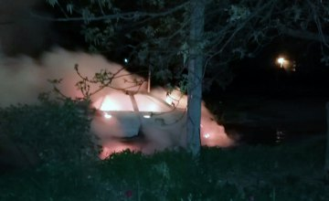 На Днепропетровщине сгорела припаркованная Audi (ФОТО)