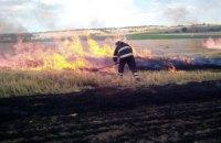 В Апостоловском районе сгорел почти гектар пшеницы (ФОТО)