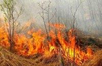 В Украине усилили ответственность за поджог сухой травы
