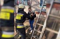 Спасатели Днепра сняли домашнего кота с дерева