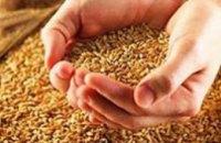 В стабилизационный аграрный фонд Днепропетровской области направят 110 тыс тонн зерна