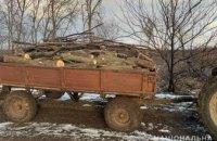 На Днепропетровщине задержали незаконных лесорубов: мужчины везли целый прицеп дров ясеня и акации
