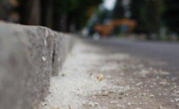 «Горзеленстрой» не будет вырубать пуховые тополя