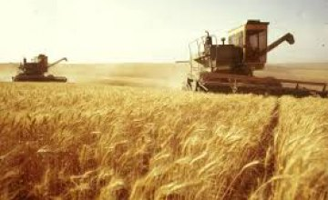 Днепропетровщина вышла на финишную прямую в сборе ранних зерновых