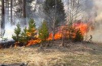 В этом году в лесах Днепропетровщины произошло 16 пожаров