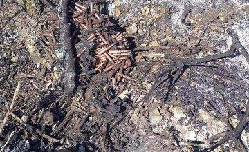 Под Днепром в траве горели боеприпасы