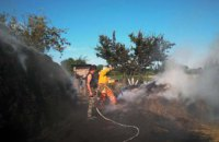 В Днепропетровской области на территории частного дома загорелось сено: огонь уничтожил 40 кв. м (ФОТО)