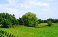 В Днепропетровской области государству вернули земельный участок стоимостью выше 2,6 млн грн
