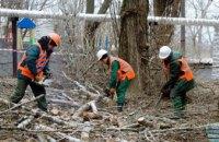 В Днепре в 2019 году планируют высадить 11 тысяч деревьев и кустов
