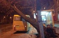 В центре Днепра автобус с пассажирами придавило деревом (ФОТО)