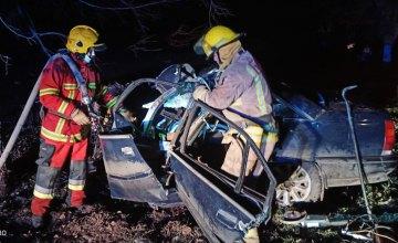 На Днепропетровщине Opel влетел в дерево: есть погибшие