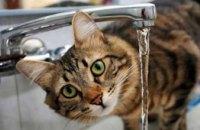 Сегодня в Днепре частично отключат водоснабжение