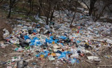 Горсовет: «В стихийных свалках мусора виновны жители города и коммерческие предприятия»