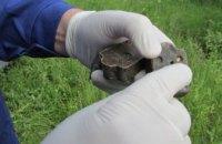 На Днепропетровщине кампания по иммунизации диких плотоядных животных от бешенства стартует в конце октября